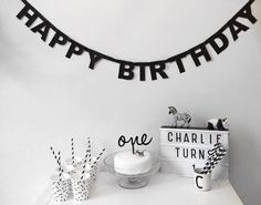 Charlies 1st Birthday Party