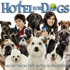 47 Best Movies Dogs Animals Images Good Movies Children