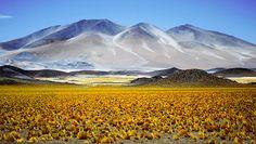 La ruta de los seis miles - Catamarca - Argentina. Los Seismiles, el ilustrativo nombre de este circuito del noroeste de Catamarca que avanza entre 19 volcanes que se suceden, uno tras otro, con su forma cónica de bonete trunco y culmina en el Paso San Francisco,
