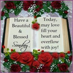 Have A Beautiful & Blessed Sunday good morning sunday sunday quotes good… Blessed Sunday Quotes, Sunday Morning Quotes, Have A Blessed Sunday, Good Morning Happy Sunday, Sunday Love, Good Morning Picture, Good Morning Good Night, Morning Pictures, Morning Images
