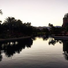 There are many beautful spots on property @renindianwells - here's a sunset view looking back from the event space over one of the on site lakes. We truly love this property - need to get back soon! . . . . . . #instatravel #instahotel #luxury #eventplanner #sitevisit #hotel #hotels #marriott #spg #palmtrees #palmsprings #palmdesert #california #sunset #lake #calm #meetings #getaway getaway #sitevisit #marriott #calm #hotels #hotel #palmdesert #sunset #instahotel #palmtrees #palmsprings…
