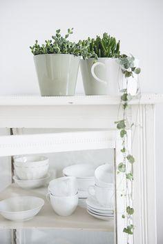 #plants #tableware | Dille & Kamille