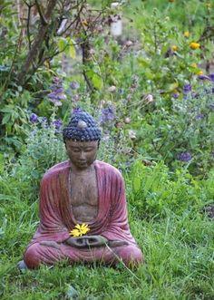 Serenity in the Garden: Serenity in the Garden: Continuously Creating....