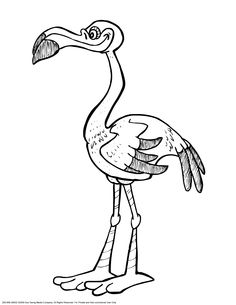 cool flamingo coloring pages for kids For Computer
