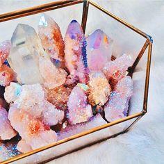 crystal terrarium