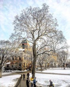 From our friends at Brown  @brownu - Ok snow in March isn't ALL that terrible  .  @lauratamarajaramillo #BrownUniversity #goviewyou