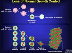 What is Cancer & Cancer Cell Mutation.  Cure for Cancer by www.SimpleDailyHealth.com
