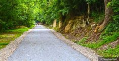 The Tweetsie Trail in Eastern Tennessee.  The 10-mile stretch of corridor between Johnson City and Elizabethton.  New rail trail opens August 30, 2014.