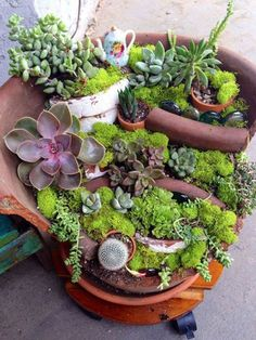 Funny pictures about Broken Pots Turned Into Beautiful Fairy Gardens. Oh, and cool pics about Broken Pots Turned Into Beautiful Fairy Gardens. Also, Broken Pots Turned Into Beautiful Fairy Gardens photos. Diy Garden, Garden Projects, Garden Pots, Garden Ideas, Potted Garden, Tiered Garden, Garden Pallet, Fairies Garden, Pallet Patio