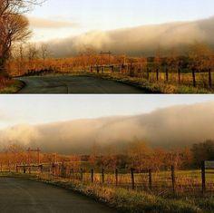 thick fog cresting over the landscape