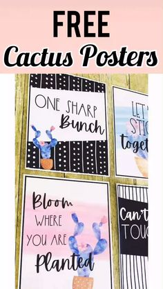 These cactus classroom posters are a beautiful addition to any classroom! Display these cactus print Kindergarten Classroom Layout, 3rd Grade Classroom, High School Classroom, Special Education Classroom, Future Classroom, Preschool Classroom, Classroom Decor Themes, Classroom Bulletin Boards, Classroom Displays