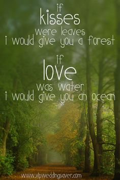 If kisses were leaves, I would buy you a forest. If love was water, I would buy you an ocean.