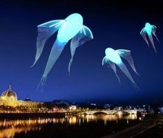 La Fête des Lumières 2012 à Lyon