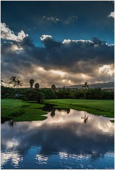 blue reflections ,Maui
