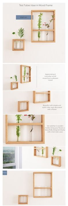 (Inspiration not instructional) Test tube vase wall frames