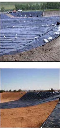 Large pond liner installation pond liner installation for Large pond liners