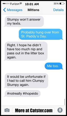 Texts From Mittens: The St. Patrick's Day Aftermath Edition | Catster