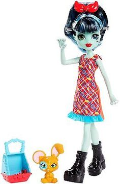 Monster-High-Monster-Family-ALIVIA-STEIN-Doll-with-Pet-NEW-2018