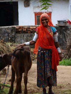 femme indienne et sa vache