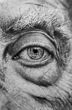 Incredible drawings submitted by steve toth realistic eye drawing, male fac Old Man Portrait, Pencil Portrait, Portrait Art, Male Face Drawing, Realistic Eye Drawing, Drawing Eyes, Pencil Art Drawings, Art Drawings Sketches, Tattoo Sketches