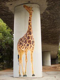 giraffes under 580, freeway giraffe paintings, oakland public art on freeways