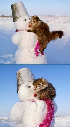 I love you, Mr. Snowman...so cute!