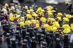 Hong Kong Umbrella Revolution Art