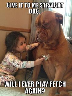Give it to me straight Doc...will I ever play fetch again? #healthcare #humor