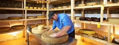 Fromagerie zu Riegersburg - The Cheeseartist :: Beef, Tableware, Food, Cheese Plant, Dinnerware, Meal, Dishes, Essen, Hoods