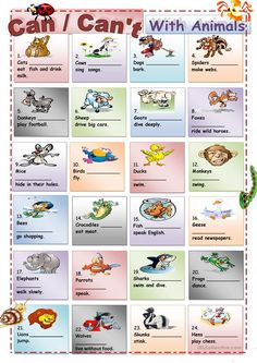 Can /Can't with Animals - English ESL Worksheets English Verbs, English Vocabulary, English Grammar, Teaching English, English Language, English Course, English Class, English Lessons, Learn English