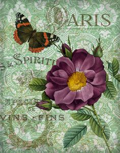Inspiration for a wedding gift box Memories of Paris II by Abby White ~ floral art Decoupage Vintage, Vintage Diy, Floral Vintage, Decoupage Paper, Vintage Labels, Vintage Ephemera, Vintage Cards, Vintage Flowers, Vintage Paper