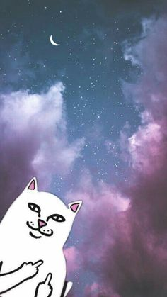 Ripndip cat with hologramy background ripndip wallpaper