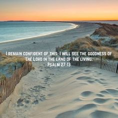 Psalms I remain confident of this: I will see the goodness of the LORD in the land of the living. Bible Verses About Strength, Biblical Verses, Scripture Verses, Bible Verses Quotes, Bible Scriptures, Faith Quotes, Mad Quotes, Land Of The Living, Wisdom Books