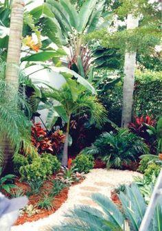 Warm Tropical Backyard Landscaping Ideas (40)