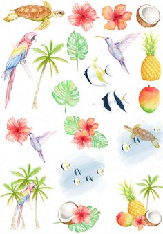 Coconut Palm Tree Illustration Ideas For 2019 Tropical Birds, Tropical Flowers, Paper Tree Classroom, Tree Plan, Birds Of Paradise Flower, Wedding Planner Binder, Coconut Palm Tree, Summer Clipart, Tree Graphic