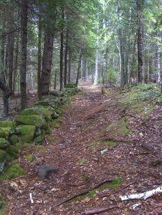 Popham Beach State Park - Maine Trail Finder, my absolute favorite trail!