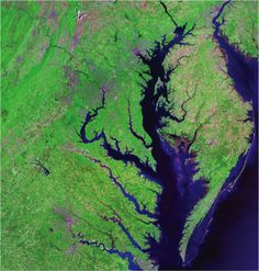 Satellite image of the Chesapeake Bay and the Delmarva Peninsula. Source: US Geological Survey #environment #geology