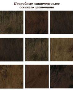 Какой цвет волос идет цветотипу Осень