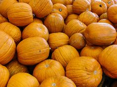 Pumpkins at Monterey Market