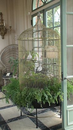 Large old bird cage in the sunroom porch + shabby chic + vintage + beachy + bungalow + country