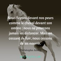 """And do not forget to be happy"": The Alphabet of Positive Psychology by Christophe André Nous fuyons devant nos peurs comme le cheval… Christophe André - Art Of Equitation Happy Quotes, Positive Quotes, Best Quotes, Motivational Quotes, Moving On Quotes Letting Go, Quotes About Moving On, George Morris, Equestrian Quotes, Equestrian Outfits"