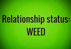 strainmadness: Relationship: weed