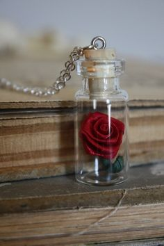 Beauty and the Beast Rose Vial Necklace.  LOVE!