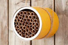This Mason Bee House is incredibly simple to construct and will encourage these beneficial bees to nest nearby. Get the how-to from Home Made Simple.
