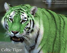 Celtic Tiger by OKami-hu