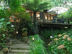 stone cottage interiors   Charming stone cottage hidden among tree ferns