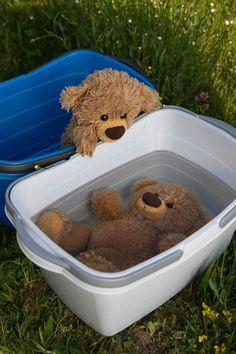 Grizzly Bear Cub, Bear Cubs, Tatty Teddy, Bear Wallpaper, Disney Wallpaper, Huge Teddy Bears, Teddy Bear Pictures, Cute Stuffed Animals, Cute Bears