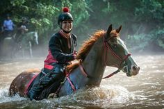 "Maureen Pruitt & 16.3 h ex race horse "" Toukie"" plunging into chest-deep river, participating in a 25 mile endurance ride. Pruitt a former exercise rider at Suffolk Downs in Boston, Mass, started ""Toukie"" in endurance in 2011 & never looked back."