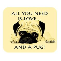 Cottage decor helper Home Decoration Custom Doormats Bedroom Cushion All You Need Is Love And Pug Dog Carpet Bathroom Rugs DM486 -- Check out the image by visiting the link.