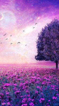 Weisheiten Lila Blumengarten , When remodeling your kitchen, it is also advised that y Purple Flowers Wallpaper, Beautiful Flowers Wallpapers, Beautiful Nature Wallpaper, Pretty Wallpapers, Beautiful Landscapes, Desktop Wallpapers, Sunset Wallpaper, Scenery Wallpaper, Cute Wallpaper Backgrounds